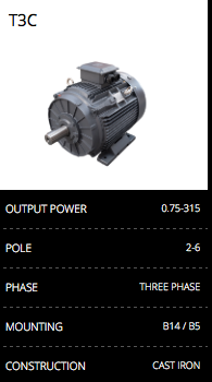 T3C Cast Iron Electric Motor