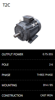 T2C Cast Iron Electric Motor